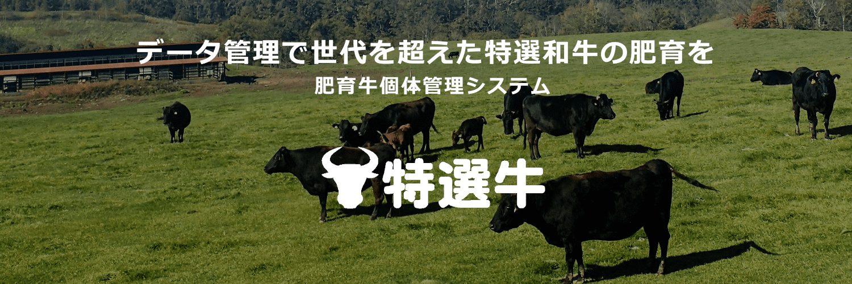 データ管理で世代を超えた特選和牛の肥育を 肥育牛個体管理システム 特選牛